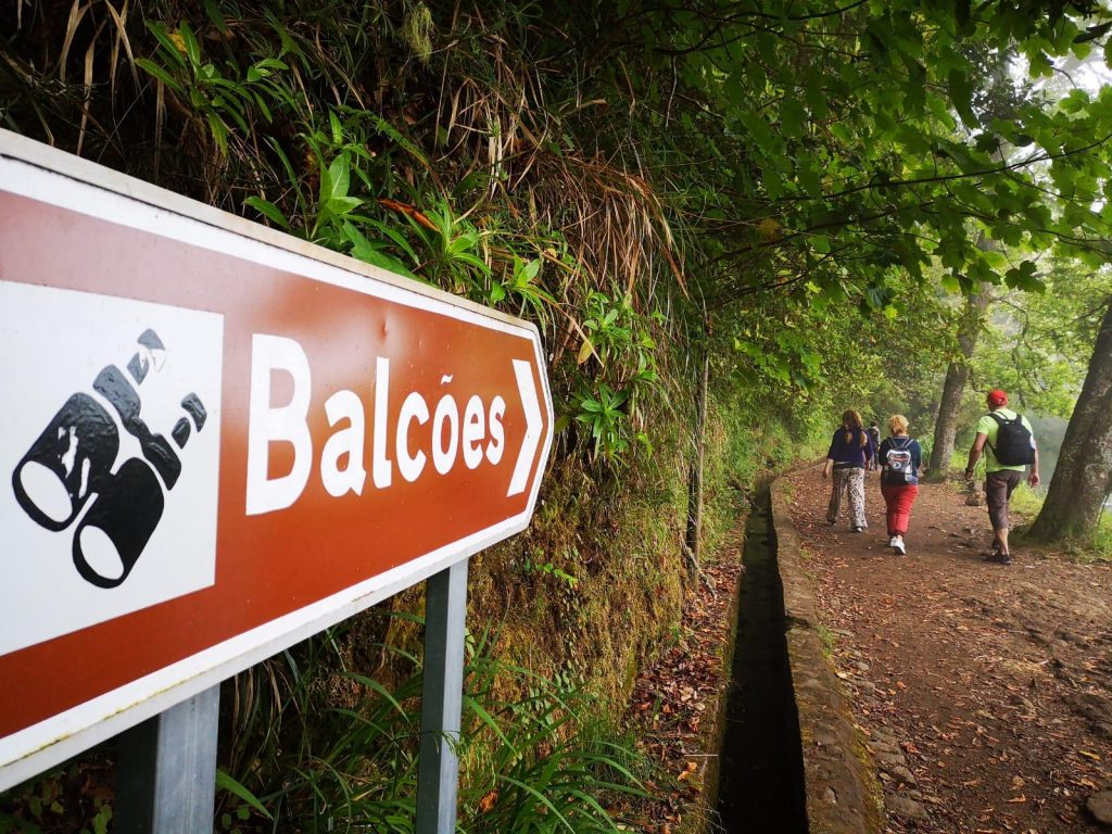 Madeira weather is like spring in Levada dos Balcoes