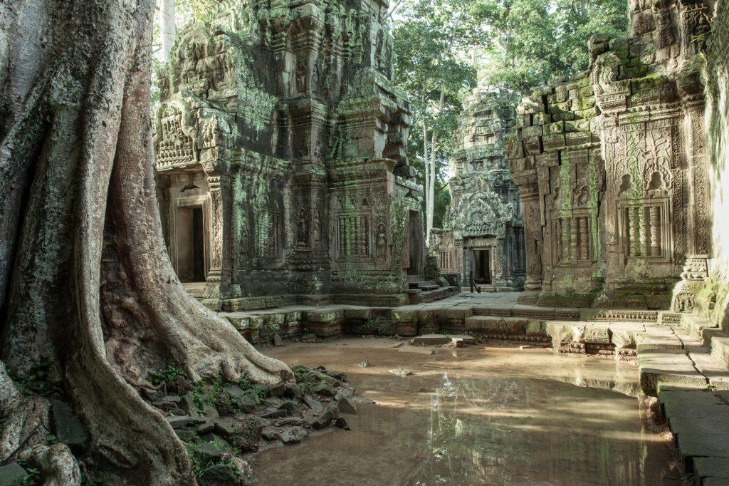 Ta Prom temple in Cambodia