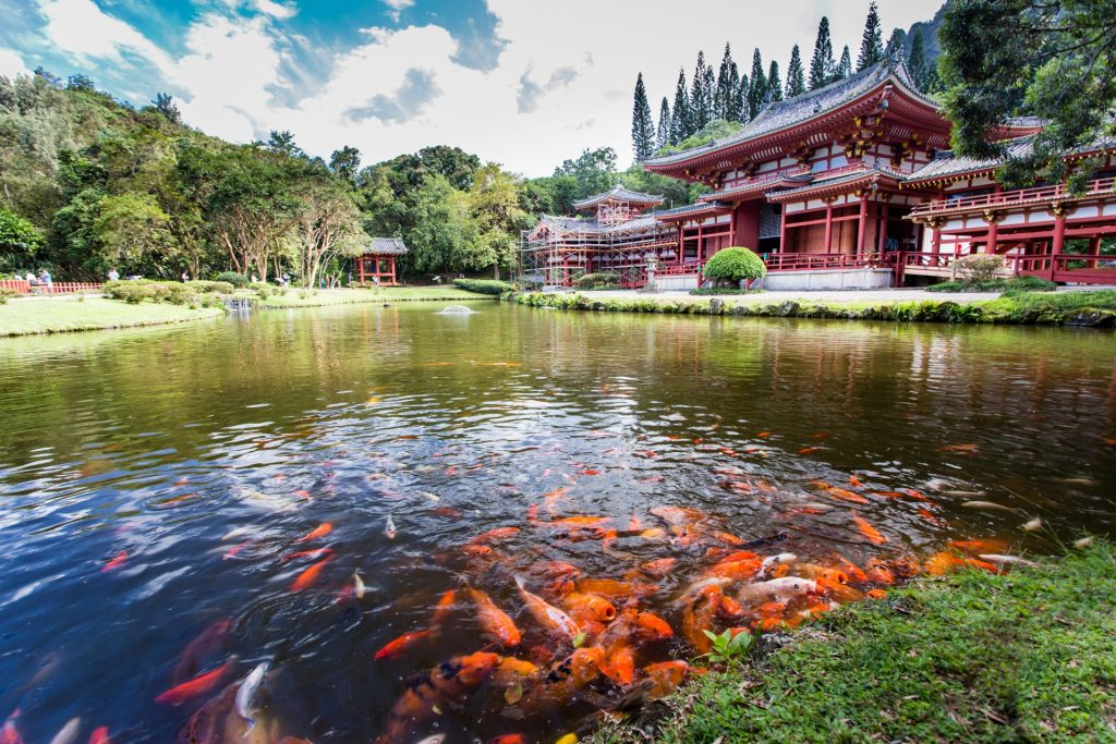 Places to visit in Oahu byodo temple
