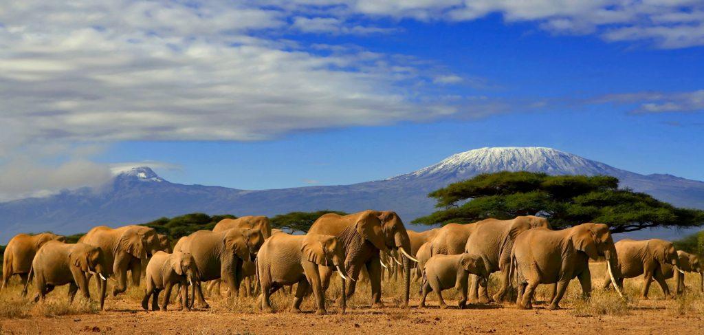 Visiting Tanzania Kilimanjaro mountain