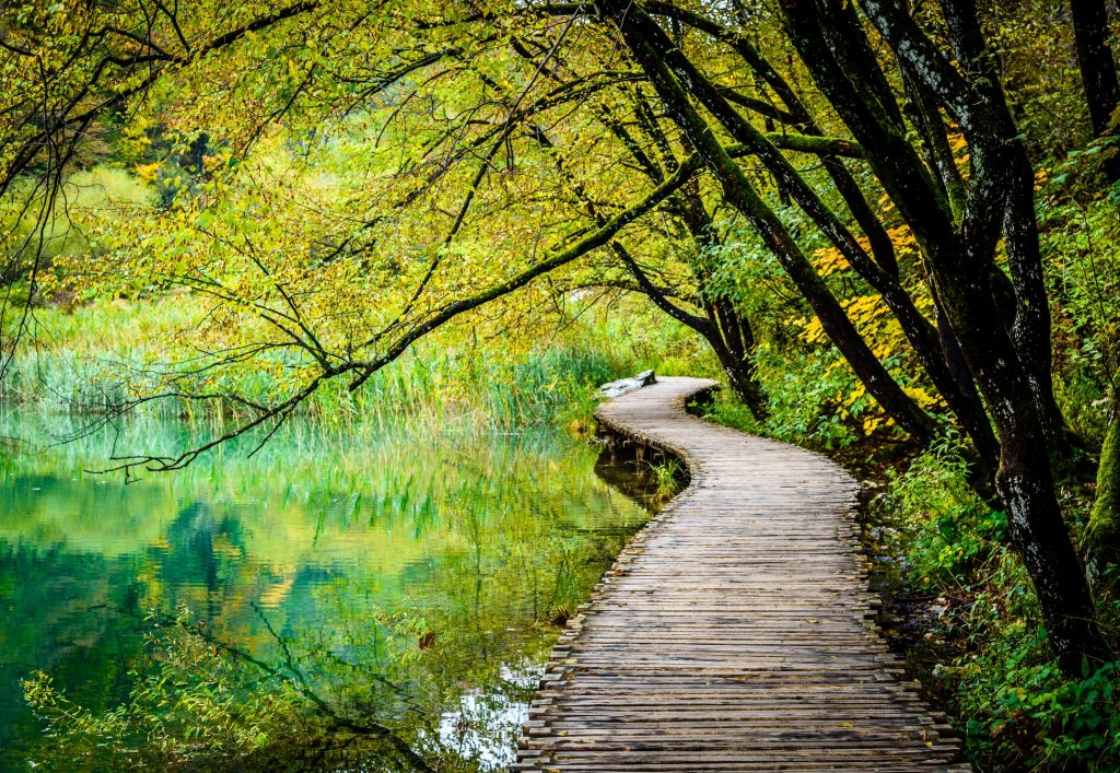 Plitvice National Park Boardwalk