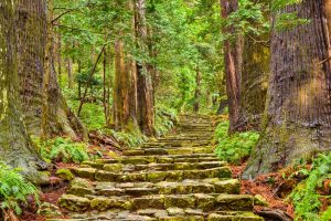 wp-content/uploads/2020/03/virtual-travel-Kumano-Kodo-Sacred-Trail-300x200.jpg