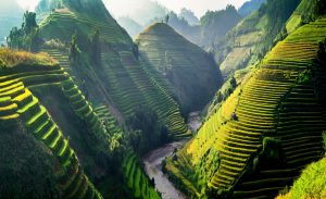 wp-content/uploads/2020/04/Rice-fields-on-terraces-in-the-sun-at-MuCangChai-Vietnam.-300x183.jpg