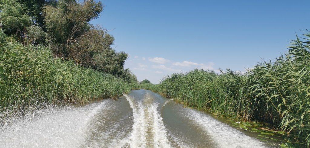 Boat ride Visiting Danube Delta